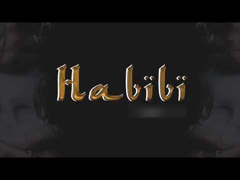 Maître Gims - Habibi (AJAY Moombahton Remix)