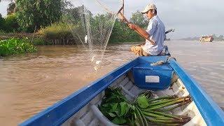 Nghề vớt cá mè vinh (Phần 2) : Nước hừng sáng vớt cá sướng tay   Săn bắt SÓC TRĂNG  