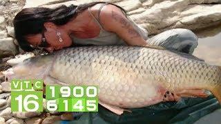 Làm giàu nhờ nuôi cá trắm cỏ theo hướng an toàn   VTC16