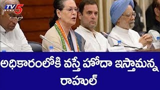 CWC meet: Will grant special status to AP if elected, says..