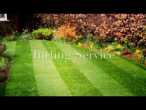 Landscaping Services in Dorking