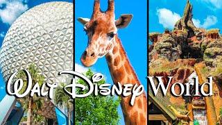 Top 10 Longest Rides at Walt Disney World
