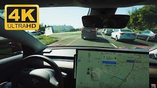 Driving On Autopilot My Entire Commute