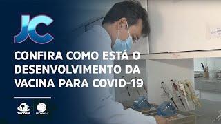 Confira como está o desenvolvimento da vacina para Covid-19 pela UECE