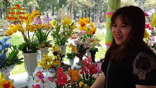 """Đi Chơi Chợ Hoa Tết 2018 ngắm dàn cây """"bạc tỷ"""" trưng bày tại Vườn Tao Đàn khiến Việt Kiều suýt xoa"""