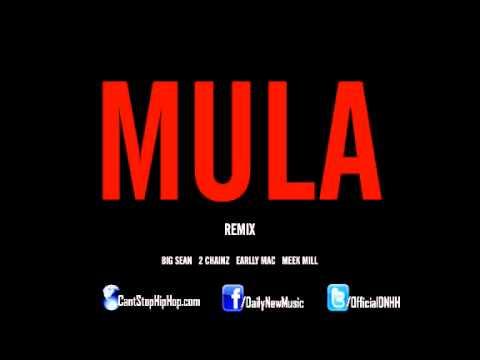 Mula Remix