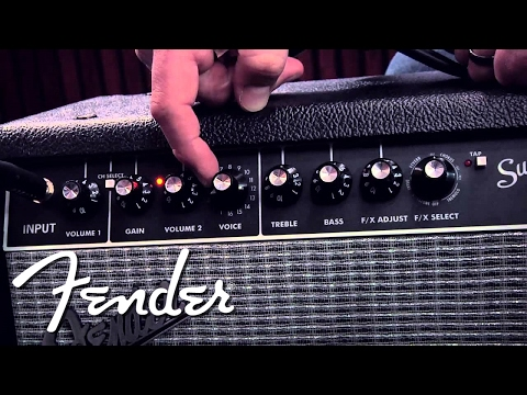 fender super champ x2 head guitar amplifiers. Black Bedroom Furniture Sets. Home Design Ideas