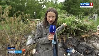 Омские кладбища тонут в мусоре