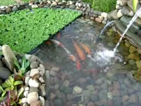 Estanque artificial con base de rocas de rio youtube - Estanques para jardines ...