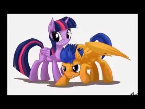 flash sentry and Twilight Sparkle | Flash+Twilight ... |My Little Pony Friendship Is Magic Twilight Sparkle And Flash Sentry