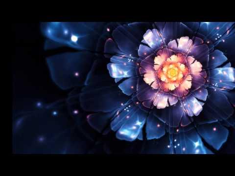 盧巧音 -《落地開花》