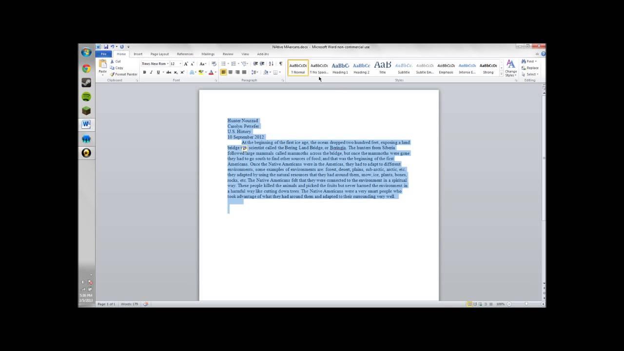 essay paragraph write