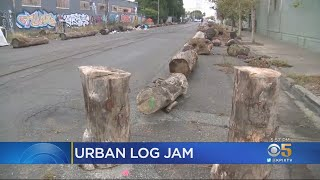Large Logs Placed On Oakland Street To Deter Homeless Not A Problem, Neighbors Say