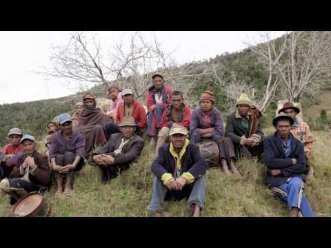 Chapitre 2: Madagascar (REDD+ et l'avenir des forêts africaines)