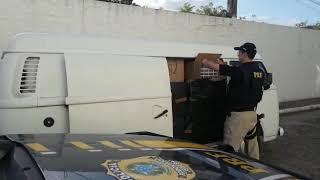 Polícia Rodoviária Federal prende contrabandista de cigarros na BR-116, em Turuçu