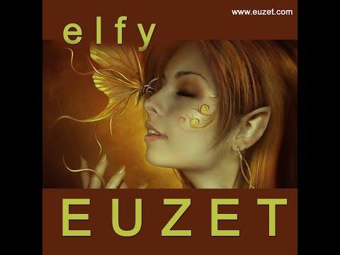 ELFY - Didier EUZET (1919 2K18)