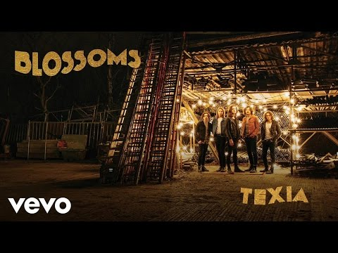 Blossoms - Texia (Official Audio)