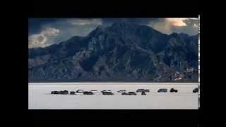 DaimlerChrysler - Infinite Possibilities thumbnail