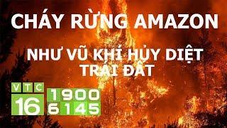Cháy rừng Amazon như vũ khí hủy diệt trái đất | VTC16
