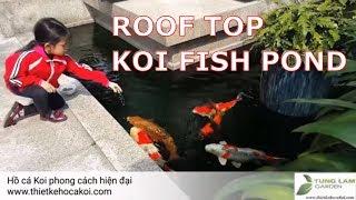 Hồ cá Koi trên sân thượng sâu 50cm có nuôi cá đẹp được không ?