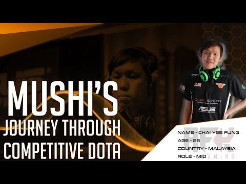 Player Perspective : Chai 'Mushi' Yee Fung