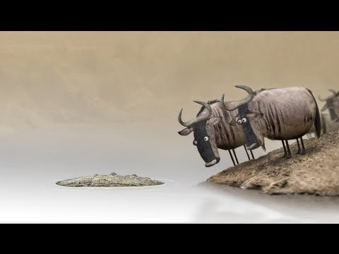 Wildebeest from Birdbox Studio [sent 488 times]