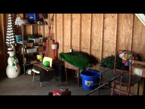SOLD - 320 Grover Cleveland Highway -- Garage Tour