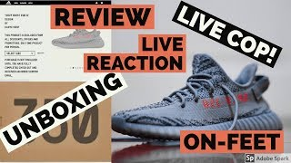 ba281753692ad YEEZY 350 V2 BELUGA 2.0- LIVE COP REACTION + UNBOXING + REVIEW + ON