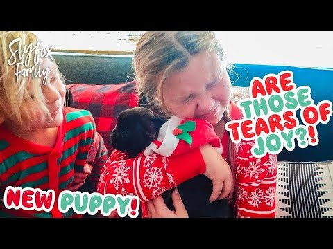 🙀 CHRISTMAS PUPPY REACTIONS! 🎄🎅 BETTER THAN iPHONE! Slyfox Family X-Mas Morning | Slyfox Family