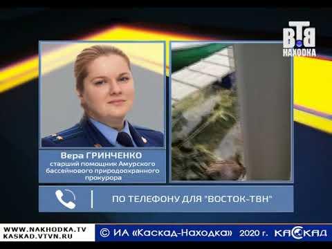 Проверка по факту затопления судна с бухте Козьмино Приморского края