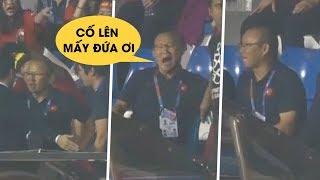 Chết cười với biểu cảm của HLV Park Hang-seo trên khán đài sau khi nhận thẻ đỏ
