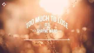 Too Much To Lose - Shayne Ward [Kara Vietsub HD]