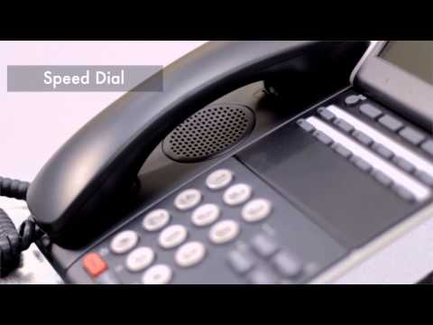 how to change display name on nec phone dt300
