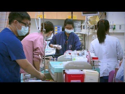 日本腦炎今年已28確定病例 6年來新高 20180719 公視晚間新聞