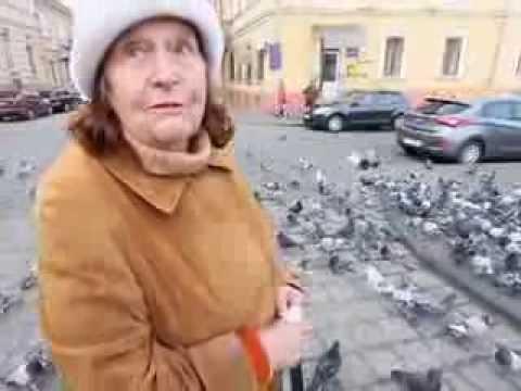 Фея і голуби