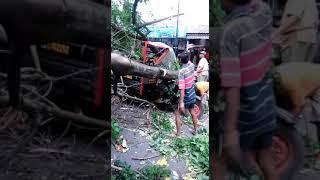 Proses Evakuasi Pengendara motor tertimpa pohon di Jalan KH Abdul Fatah atau Pasar Ngemplak