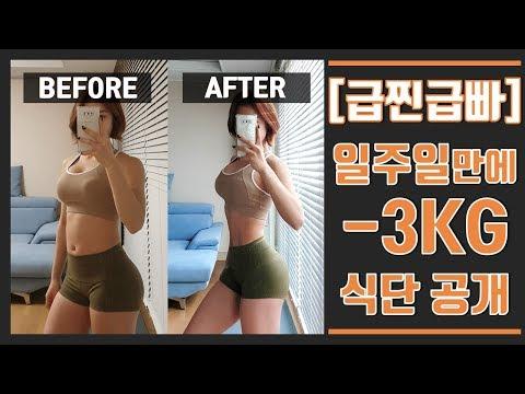 심으뜸 일주일 다이어트 3kg 감량식단 공개/ 유지어터 식단, 일반식