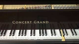 Thalli Pogathey (Achcham Yenbathu Madamayada) Piano Tutorial