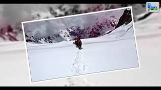 Mayali Pass Trek | Uttarakhand Tourism | Trek the Himalayas