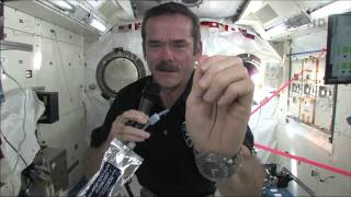 During a video link with His Excellency the Right Honourable David Johnston, Governor General of Canada, who was accompanied with 200 grade school students from Ottawa, CSA Astronaut Chris Hadfield de