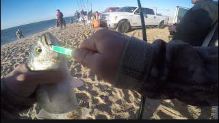 Outer Banks, NC - Fall Fishing (Bluefish Blitz)
