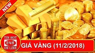 Giá vàng hôm nay 11/2: Thị trường ảm đạm, giữ vàng chờ thời - Tin hot 24h online