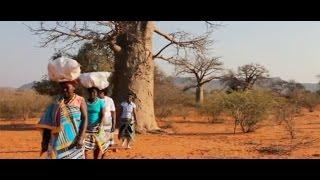 Cuộc sống của người Venda