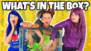 WHAT'S IN THE BOX (Descendants Mal vs Evie vs Dizzy Characters) Totally TV