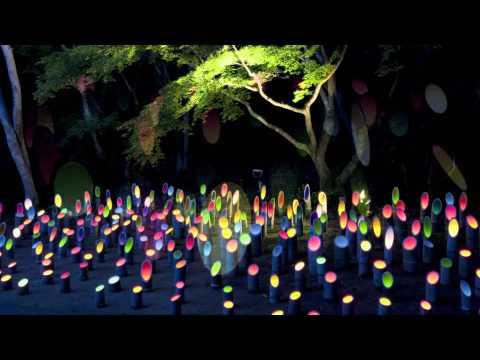 8月18日(日)まで 佐賀「国登録記念物 御船山楽園」で 「納涼~竹あかり~」イベントを開催