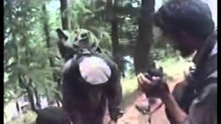Operation Red Wings Footage Ambush non graphic.