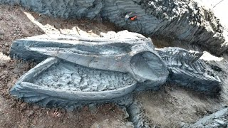 12 Most Amazing Recent Archaeological Finds