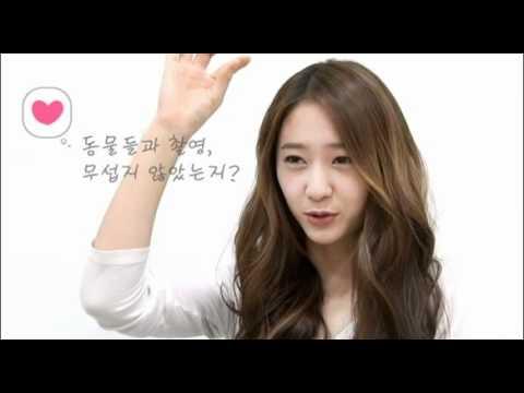 120202 하이킥3 f(x) 크리스탈 인터뷰 (Krystal's interview)