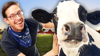 We Tried Hugging Cows For Stress Relief