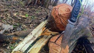 Нож Working knife wk-9 сталь х12мф Тест на древесине ( сухая яблоня)